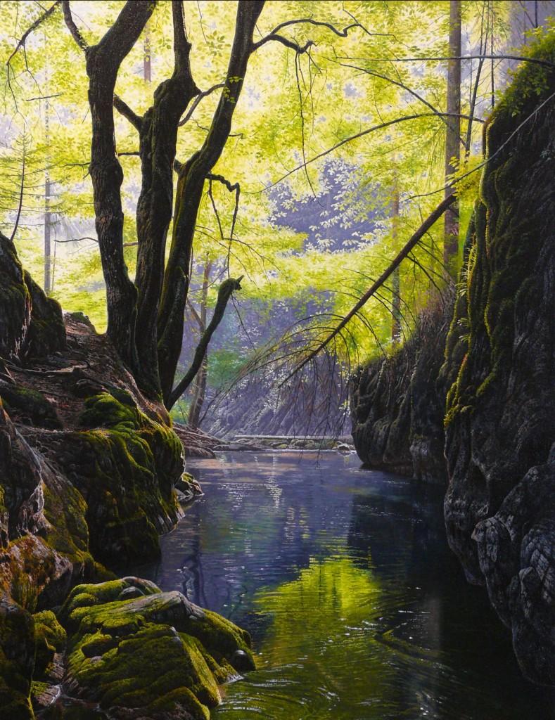 Roklina Veľkej Bielej vody v Slovenskom raji, ol. na pl., 800 x 600mm, 2016
